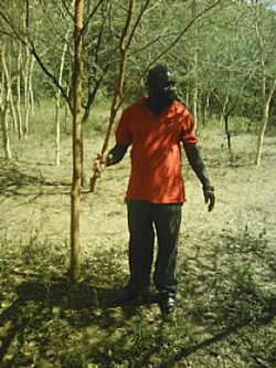 Learning from World Vision on re-generation of indigenous trees & pasture in Eldama Ravine, Baringo County.